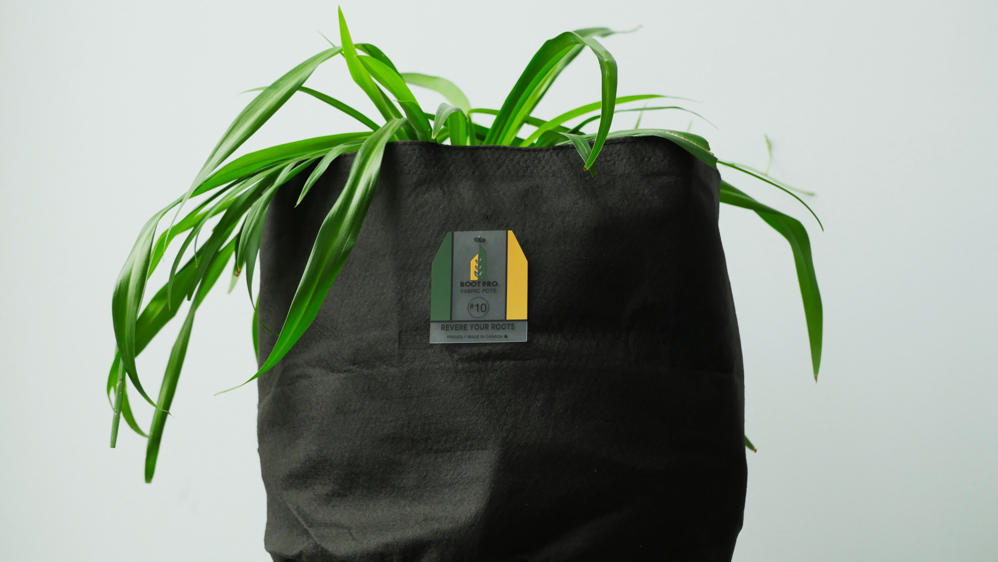 Root Pro Root Pro 10 gallons