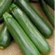 W.H.Perron Courge Zucchini Verte