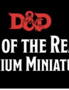 Games Workshop D&D Icons of the Realms Premium Figure