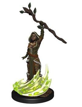 WizKids Female Human Druid - D&D: Nolzur's Marvelous Miniatures Wave 14