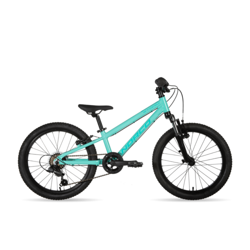 NORCO 2020 Norco Storm 2.2