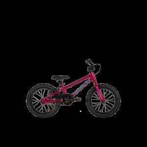 2021 NORCO Coaster 16