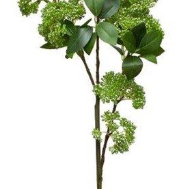 Melrose International Seedum Pick