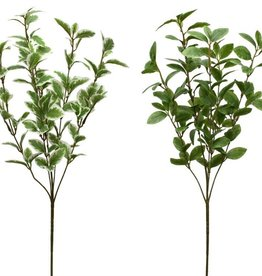 Melrose International Foliage Spray (2 Asst)
