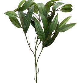 Melrose International Bamboo Spray