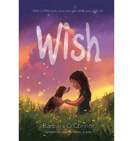 Square Fish Wish - Barbara O'Connor