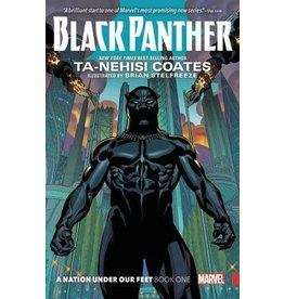 Marvel Black Panther Vol. 1 - Ta-Nehisi Coates