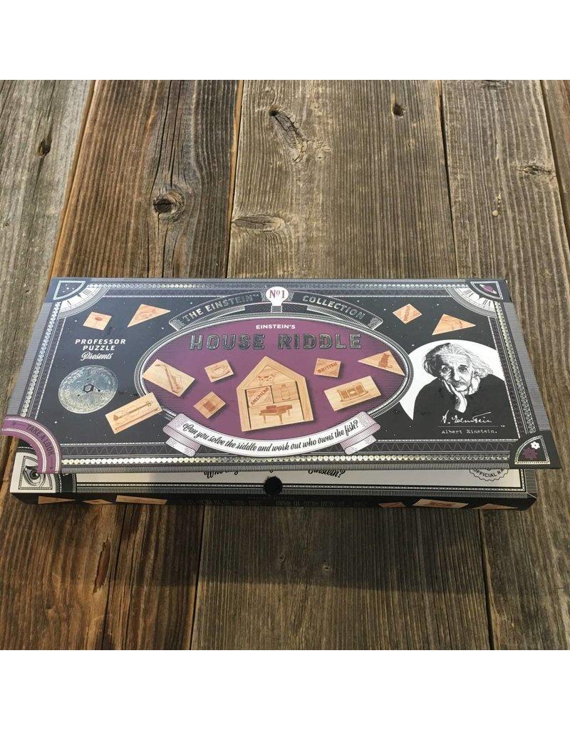 Professor Puzzle Professor Puzzle Einsteins House Riddle