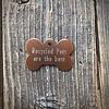 Premier Tags Dog Tags Brown
