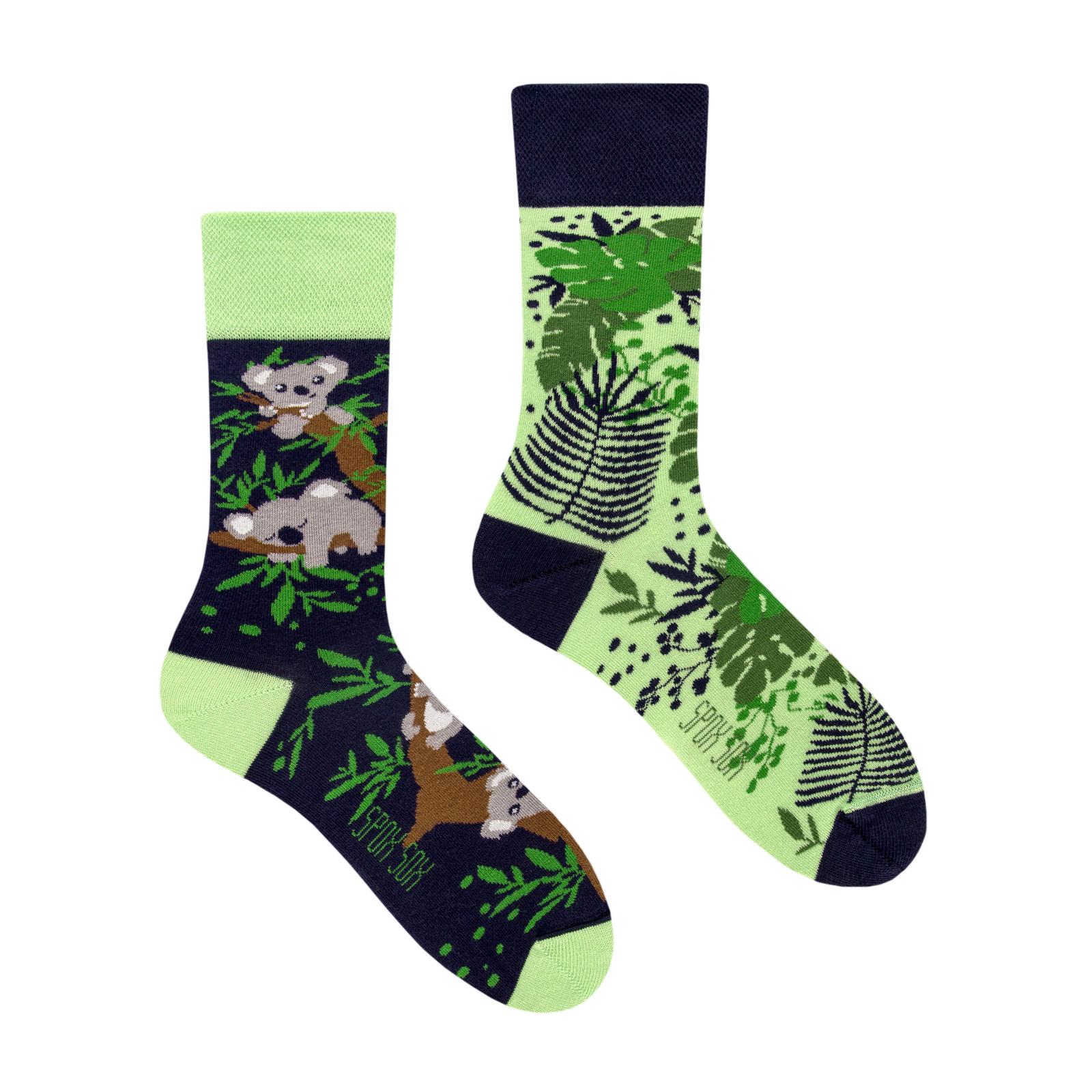 King Stone Socks Koala