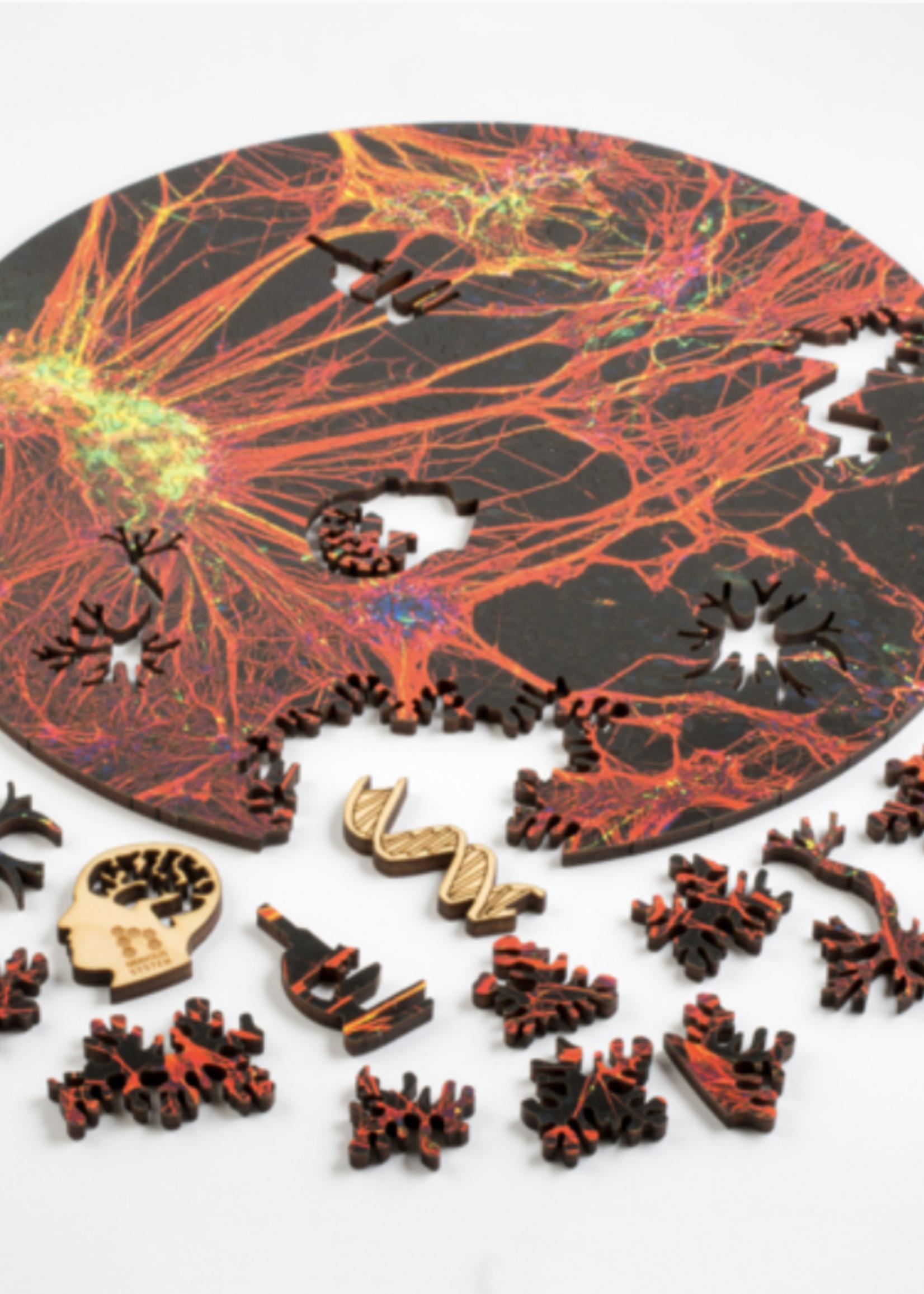 Nevous System Nervous System Orange Neural Network Puzzle