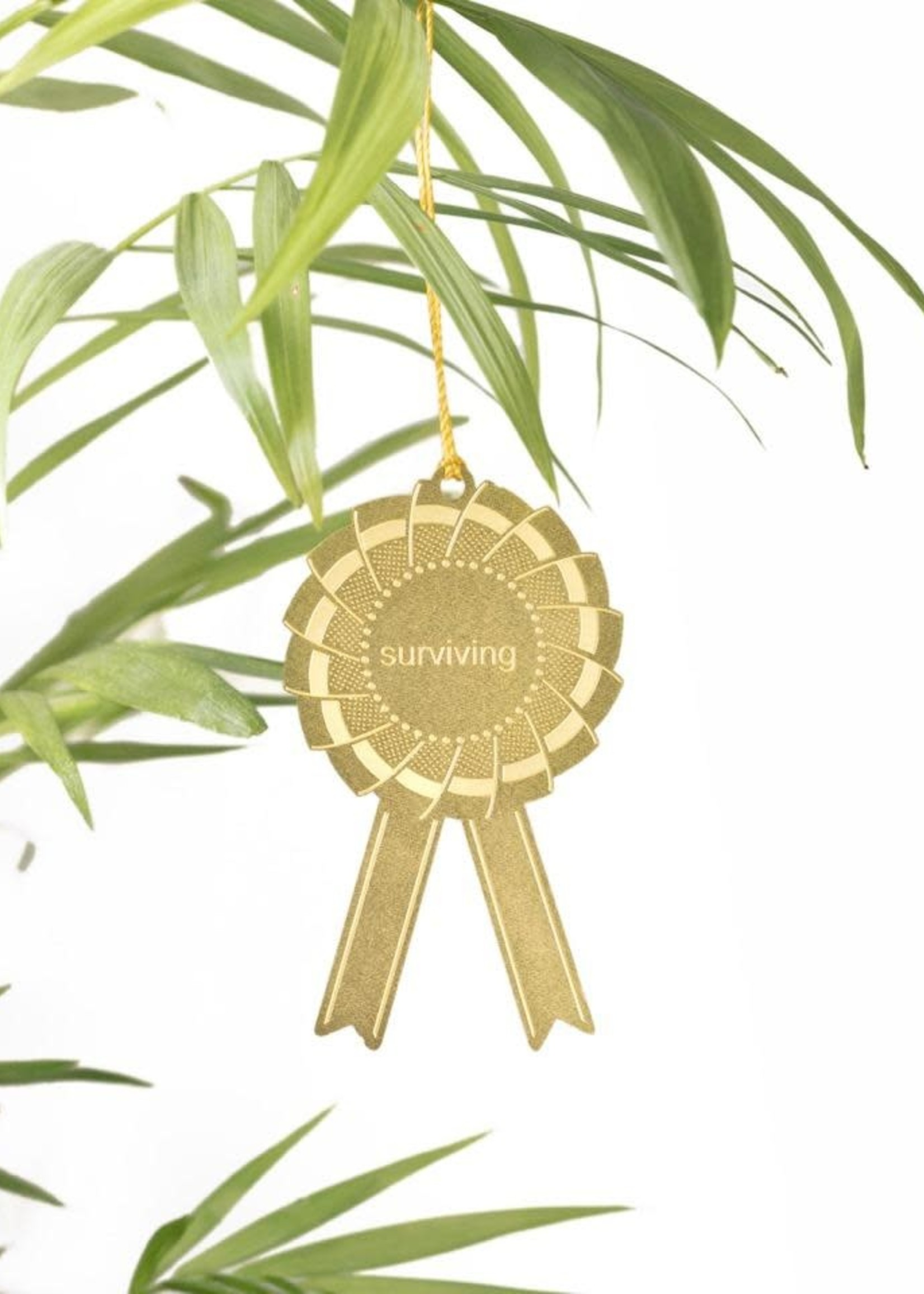 Another Studio Another Studio Plant Award - Surviving