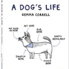 teNeues Dog's Life - Gemma Correll