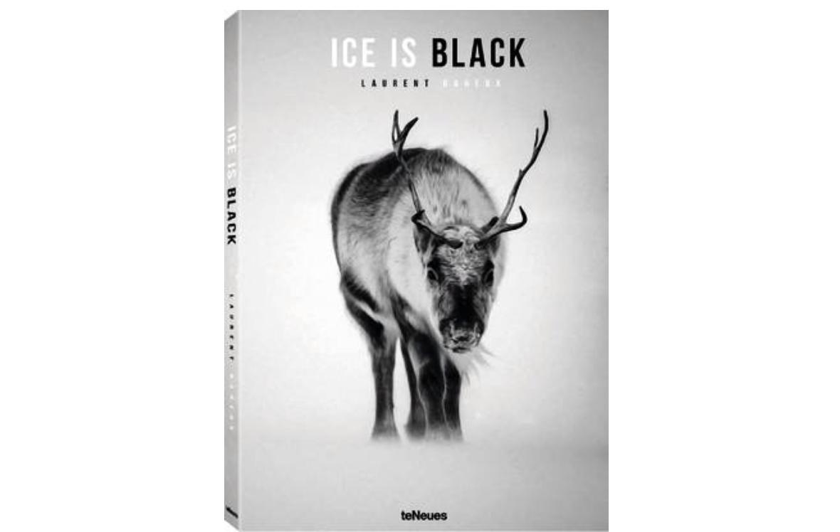 TeNeues Ice Is Black