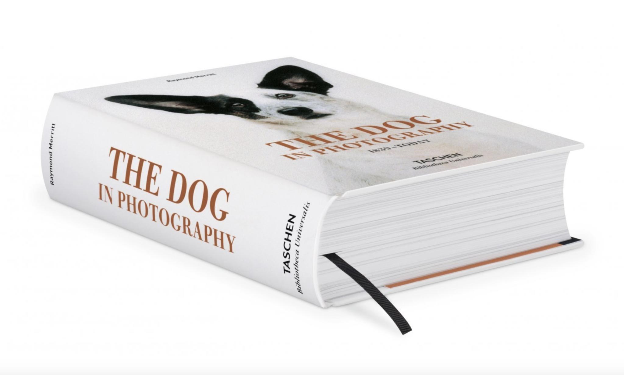 Taschen Dog In Photography