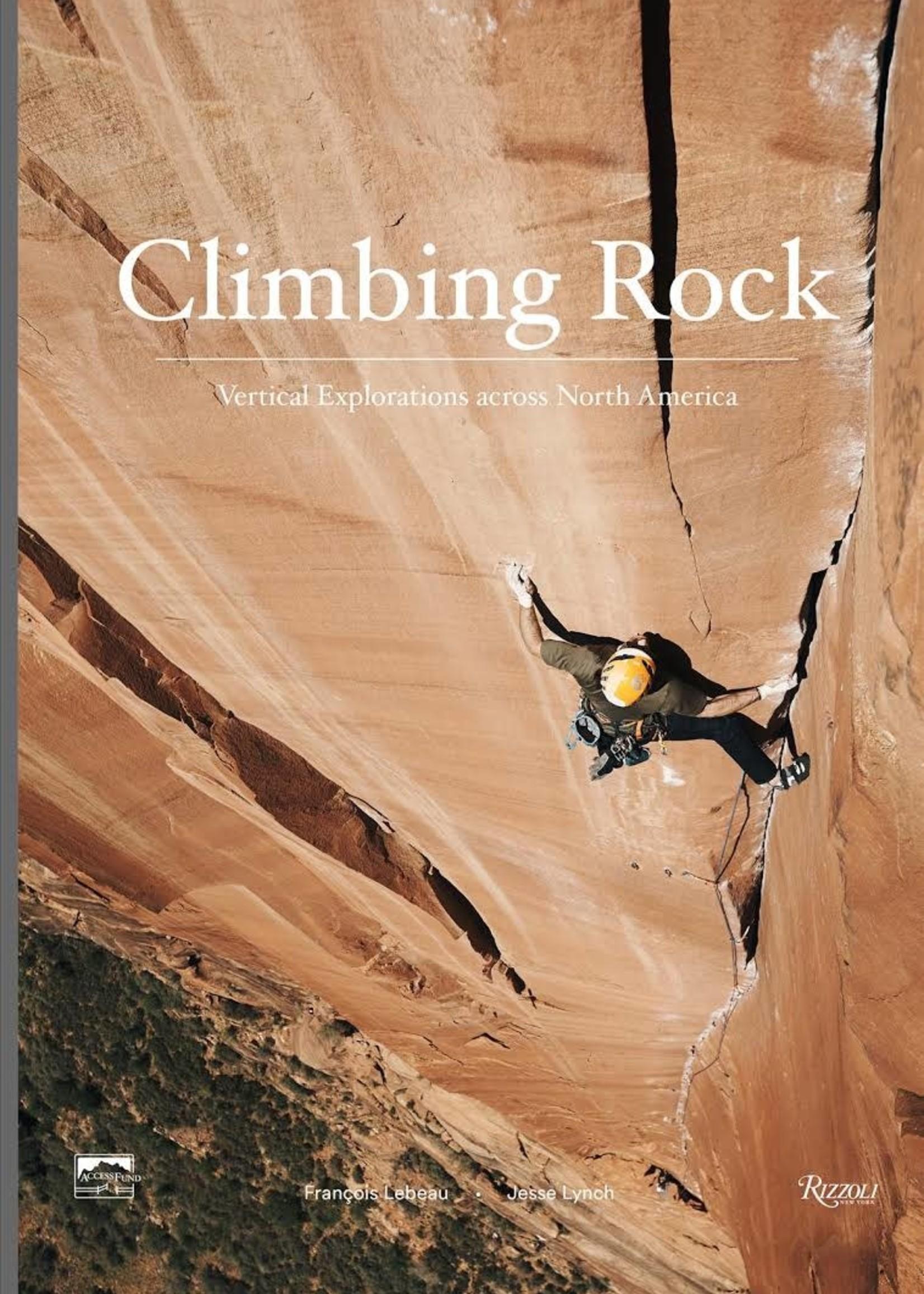 Penguin Random House Climbing Rock - Lynch