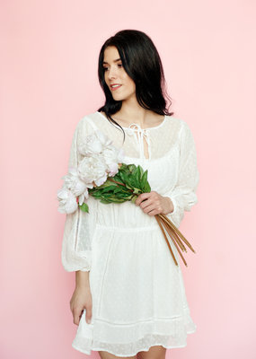 Cupcakes & Cashmere Hydrangea Metallic Dot Dress