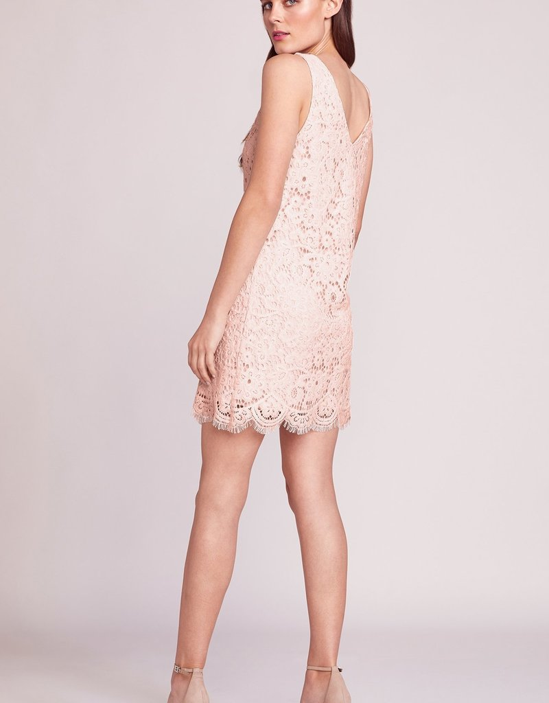BB Dakota Lost In Lace Dress *More Colours*