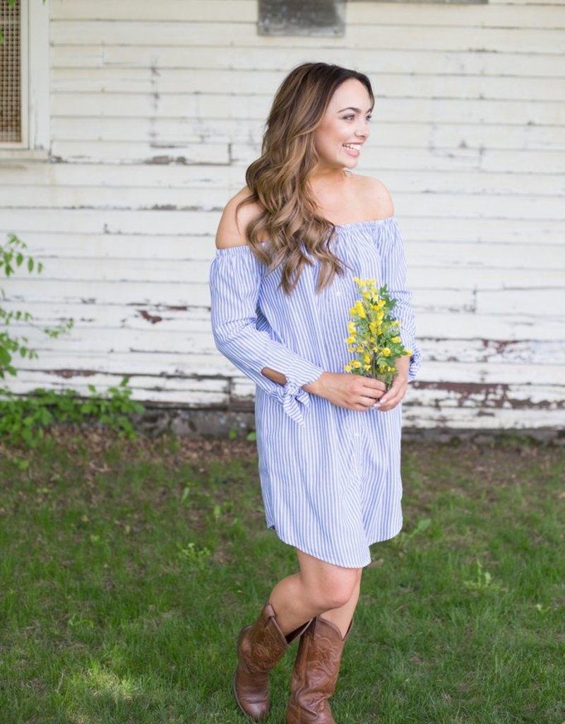 BB Dakota Chambray Stripe Midi Dress