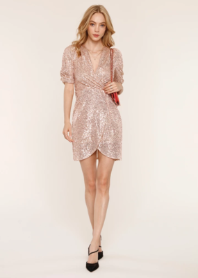 Heartloom Felix Champagne Sequin Dress