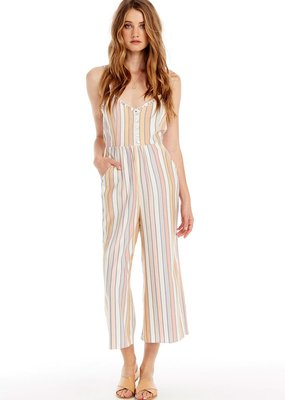 Saltwater Luxe Jay Striped Jumpsuit