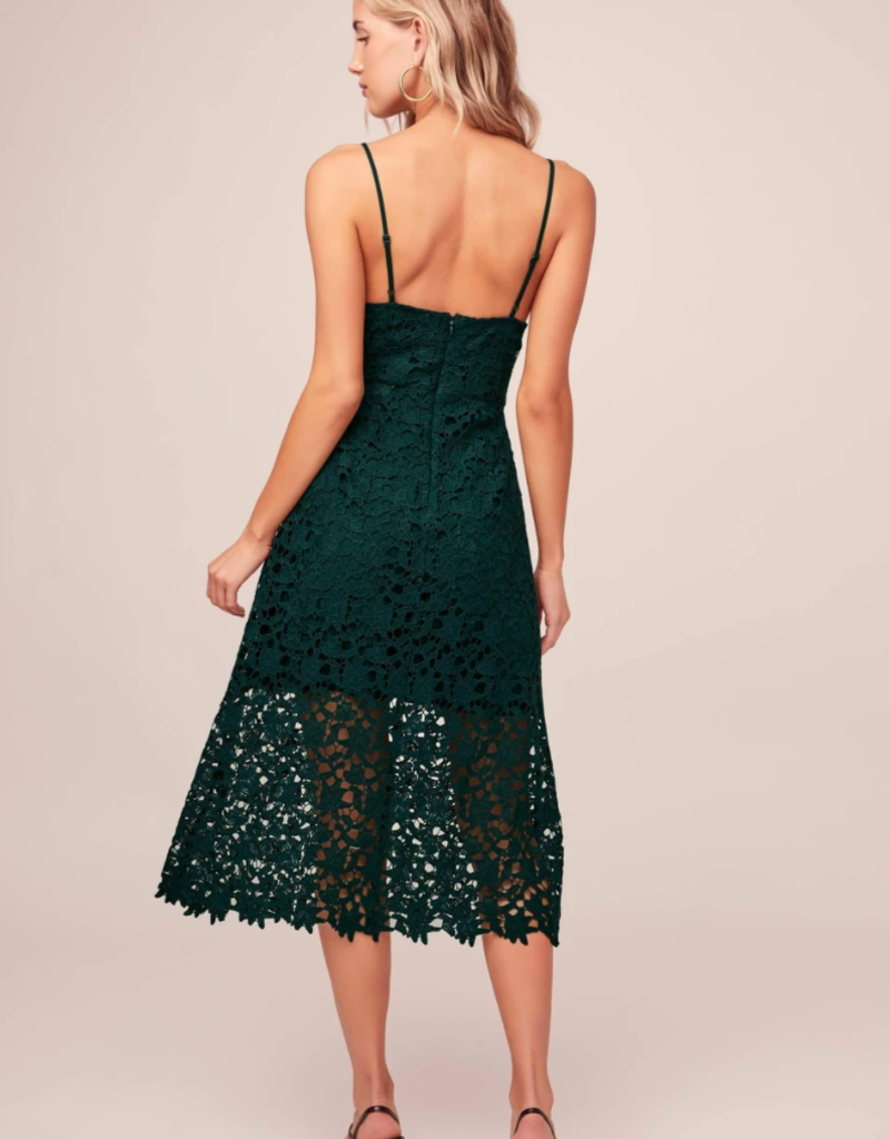 ASTR Kenna Lace Midi Dress in Dark Green