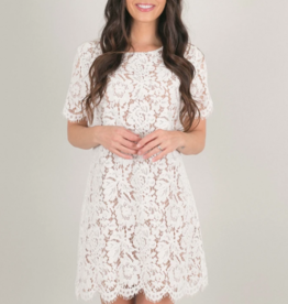 Space46 Addie Lace Shift Dress *Two Colours*