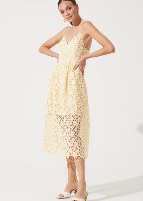 ASTR Kenna Lace Midi Dress in Lemon Yellow