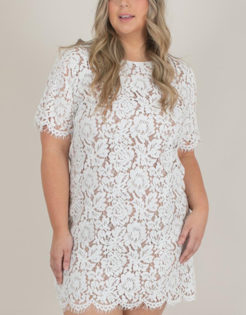 Space46 Addie Lace Shift Dress