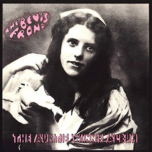 The Bevis Frond - The Auntie Winnie Album  [NEW]