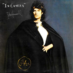 Peter Hammill - In Camera [USAGÉ]