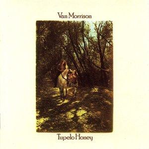 Van Morrison - Tupelo Honey [USAGÉ]