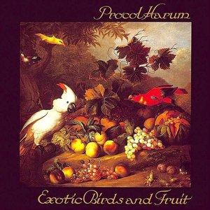 Procol Harum - Exotic Birds And Fruit [USED]