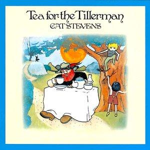 Cat Stevens - Tea For The Tillerman [USED]