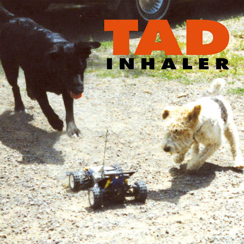 Tad - Inhaler (RSD2021 - Limited Edition Black/Red Swirl Vinyl)