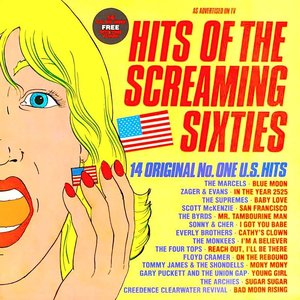 Various - Hits Of The Screaming Sixties - 14 Original No. One U.S. Hits [USAGÉ]
