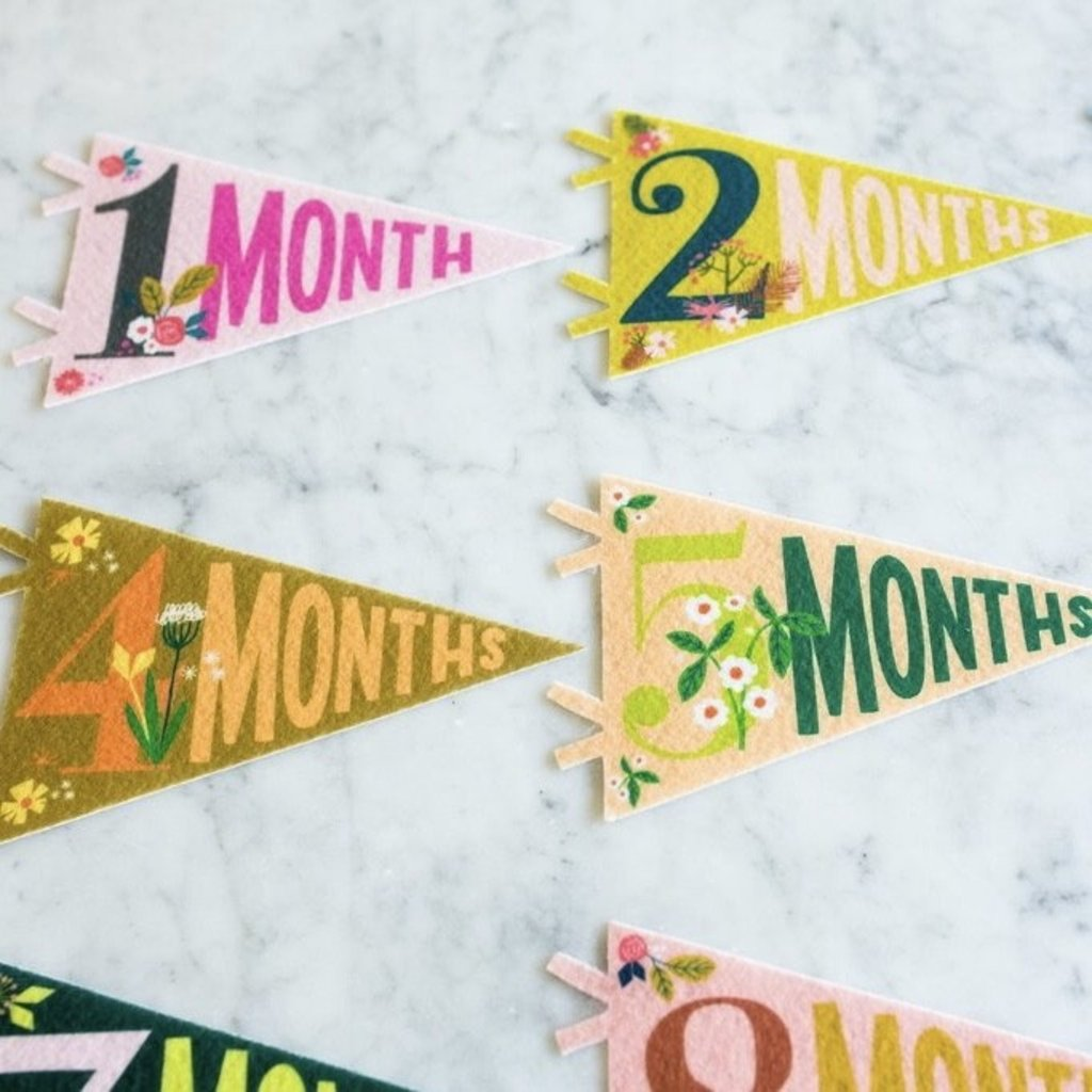 LUCY DARLING LITTLE ARTIST PETIT MILESTONE PENNANTS