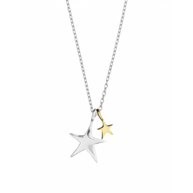 ESTELLA BARTLETT 2-TONE DOUBLE STAR NECKLACE
