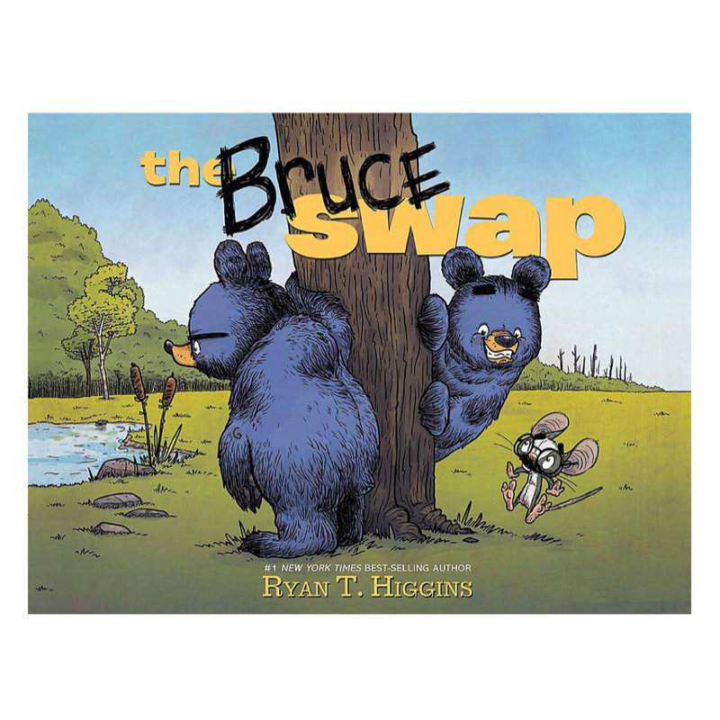 HATCHETTE BOOK GROUP BRUCE SWAP