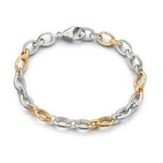 Monica Rich Two Toned Audry Link Charm Bracelet With Hinged Links