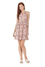 Joy Joy Pink Vine Ruffle Dress