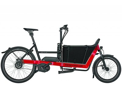 Riese & Müller Packster 40 Nuvinci (Demo Sale)