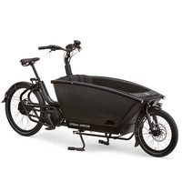 Family Bike CX/500Wh