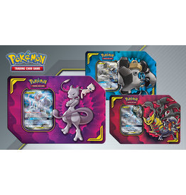 pokemon Pokemon Tag Team Tin 19Q3 Power Partnership