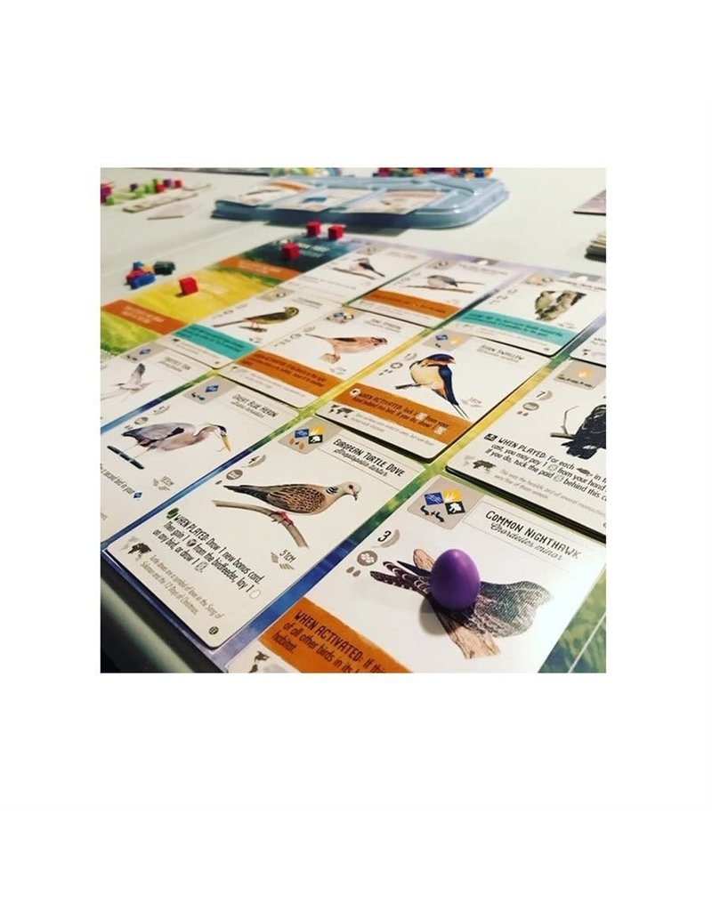 Stonemaier Games jeu board game Wingspan - European Expansion (EN)