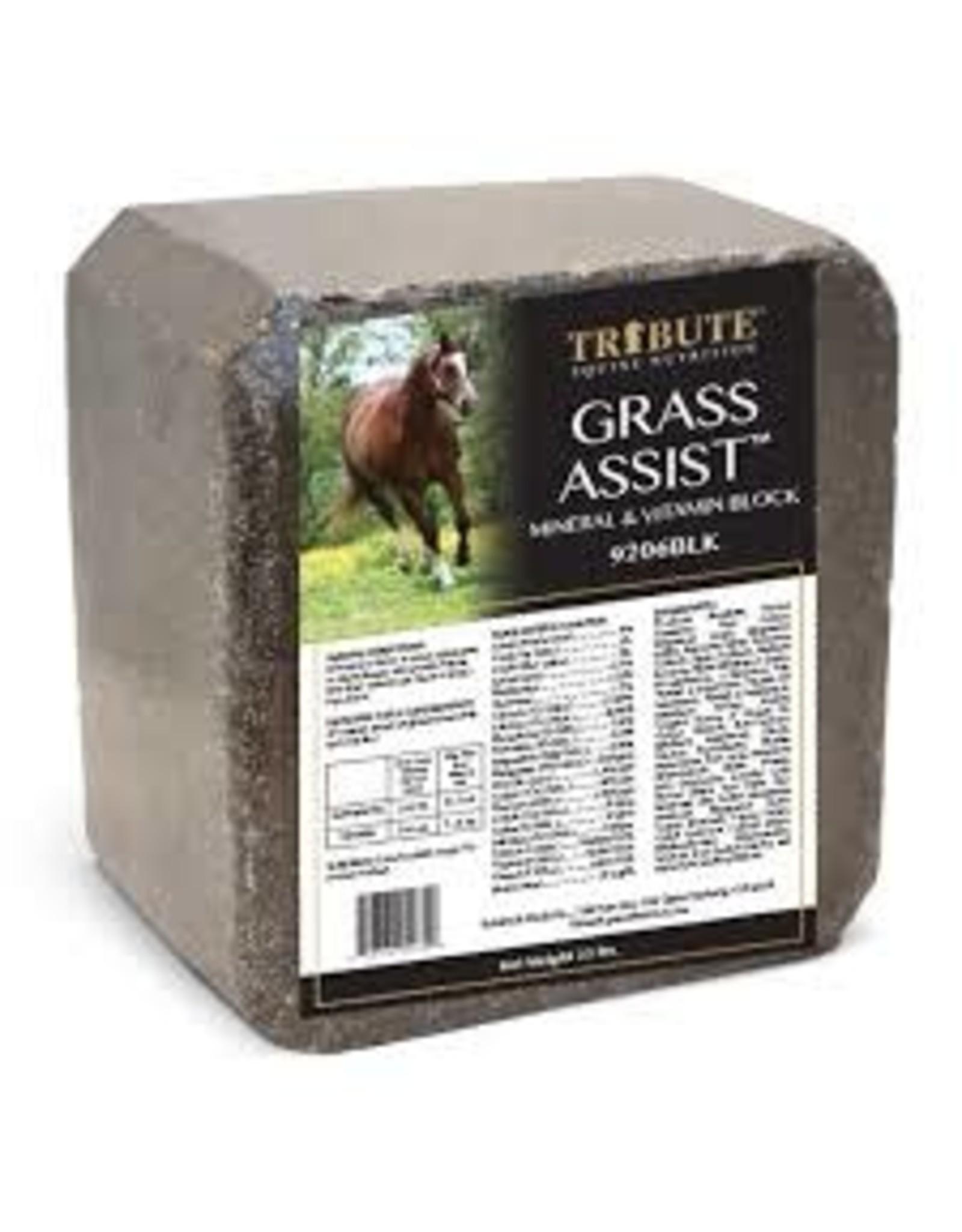 Tribute Grass Assist Mineral Block