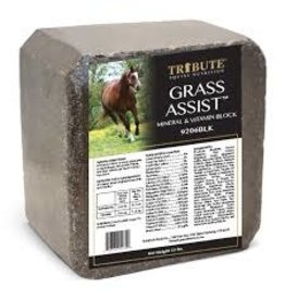 Tribute Grass Assist Mineral Block