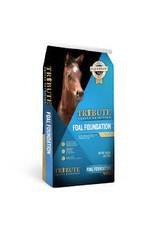 Tribute Tribute Foal Foundation