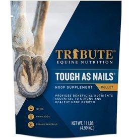 Tribute 99HOOF Tough As Nails