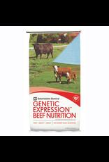 Cargill GE Champion Developer Beef Feed CG200 Texture